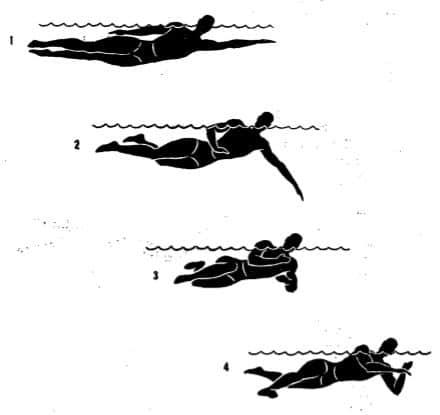 Плавание стилем на боку (оверарм) в картинках