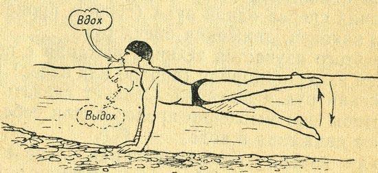 Подводящее упражнение для обучения техники дыхания при плавании кролем