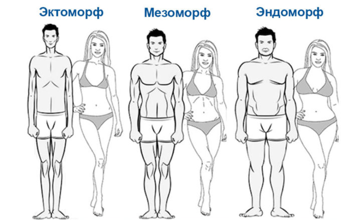Типы сложения фигуры у мужчин и женщин