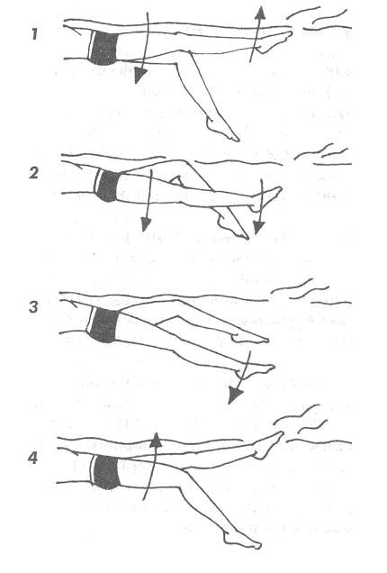 Техника ног при плавании кролем на спине
